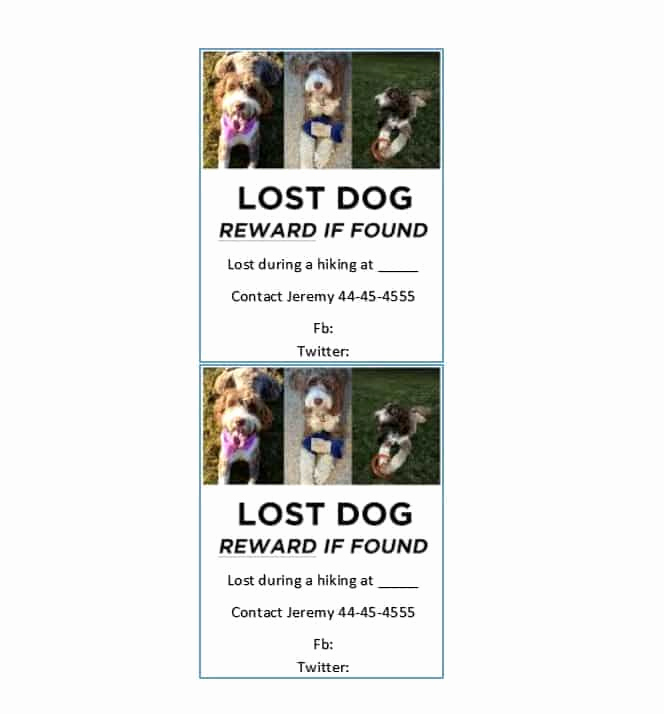 Missing Dog Flyer Template Best Of 40 Lost Pet Flyers [missing Cat Dog Poster] Template