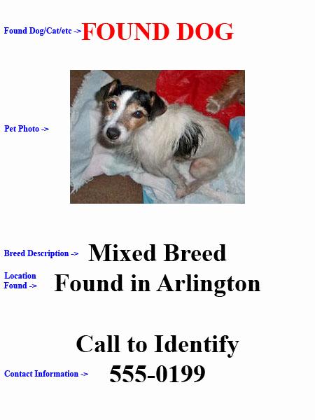Missing Dog Flyer Template Best Of Lost Dog Flyer Templa with Psd Lost Dog Flyer S Free