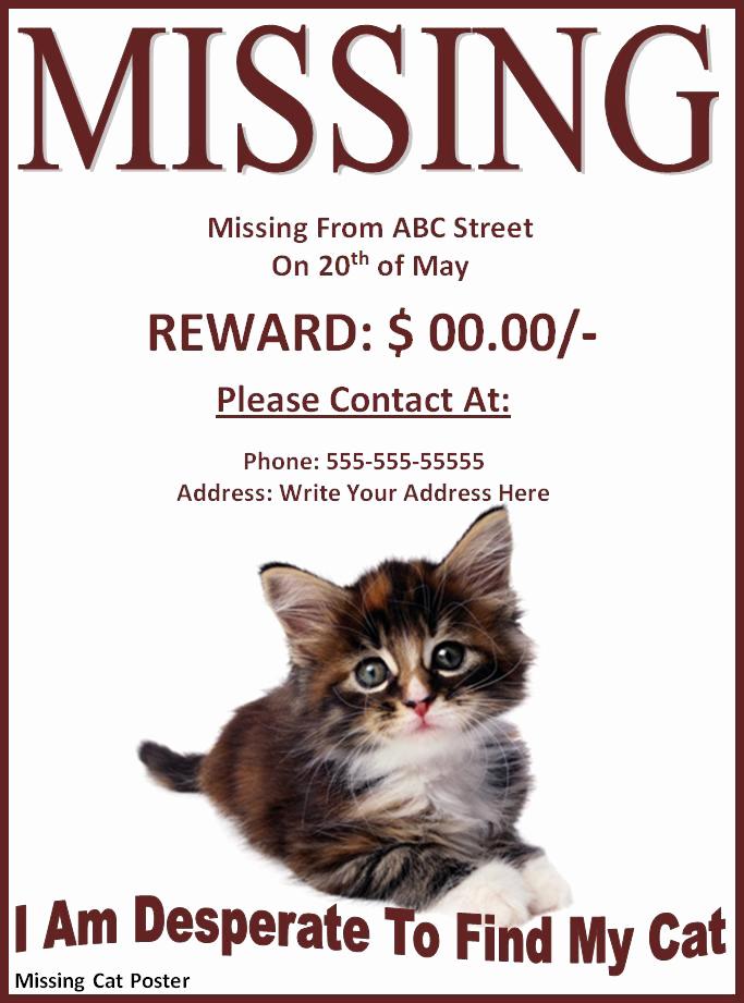 Missing Dog Flyer Template Elegant 9 Best Of Missing Dog Flyer Template Free Lost
