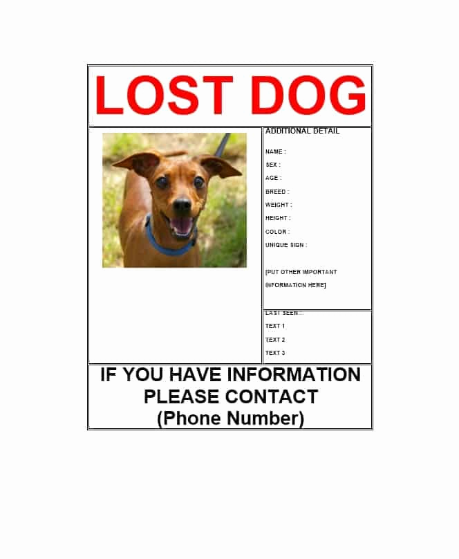 Missing Dog Flyer Template Fresh 40 Lost Pet Flyers [missing Cat Dog Poster] Template