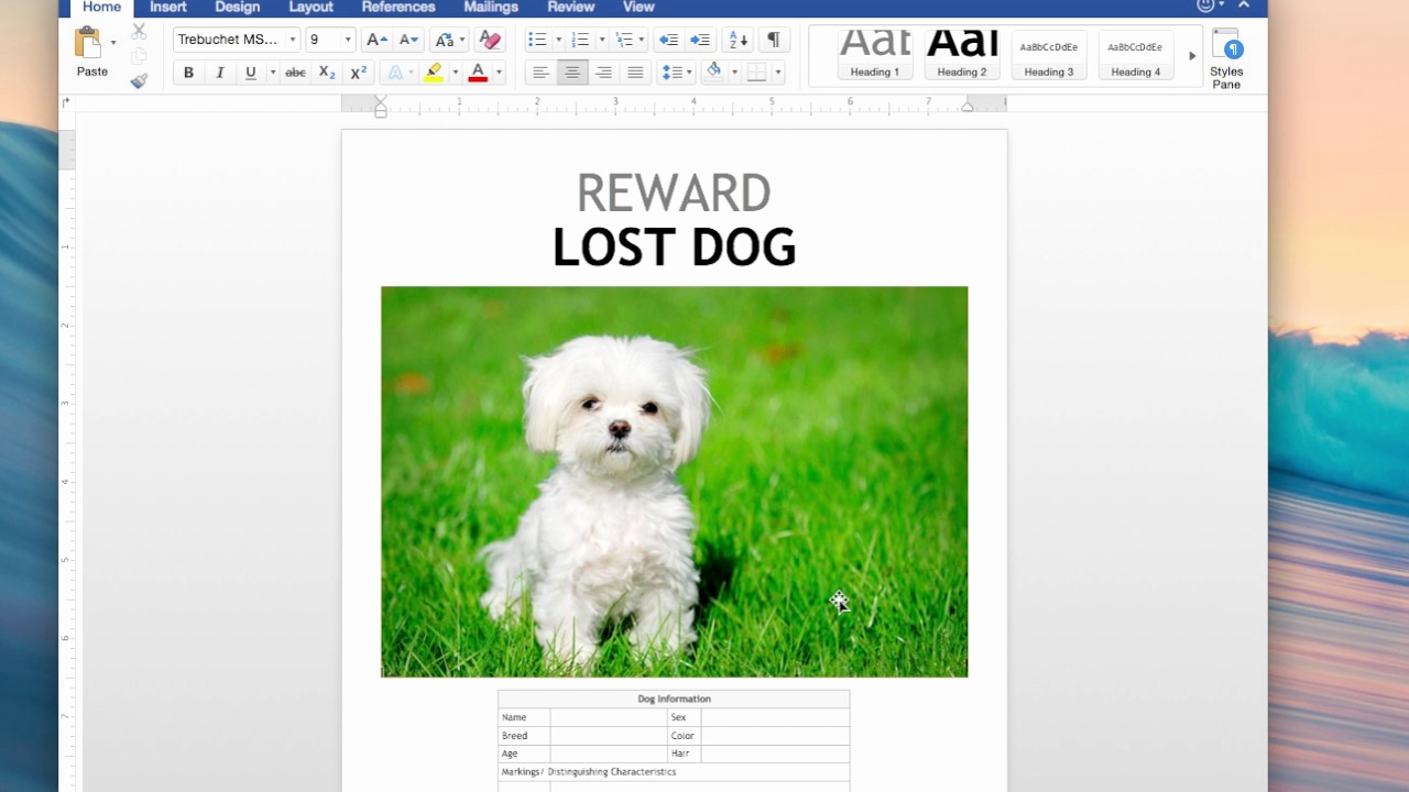 Missing Dog Flyer Template Fresh How Make A Lost Dog Flyer Using Templates Found In Word