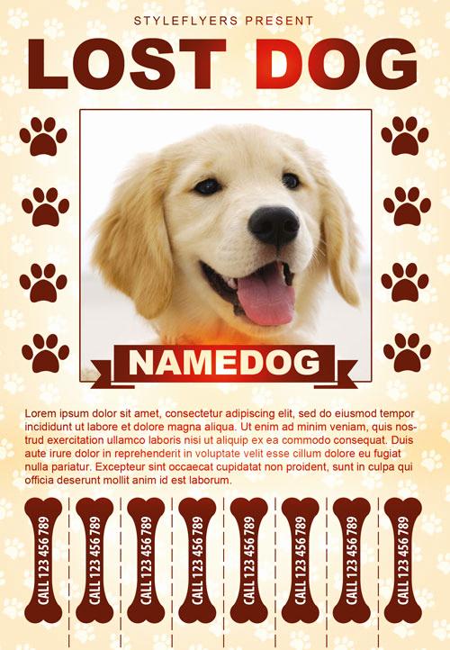 Missing Dog Flyer Template Inspirational Lost Dog Free Flyer Template Download for Shop