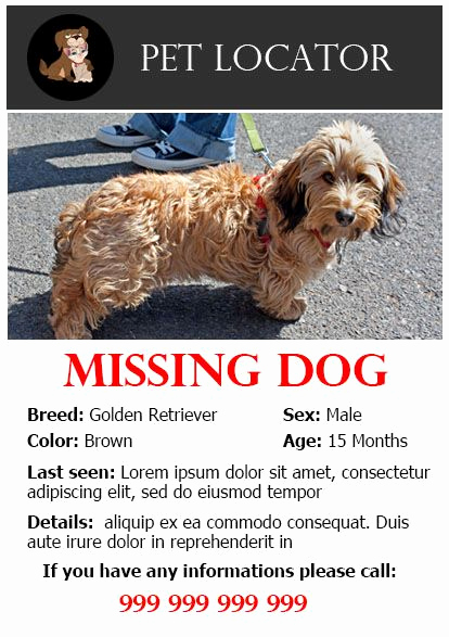 Missing Dog Flyer Template Lovely 20 Best Lost Dog Flyer Templates Demplates
