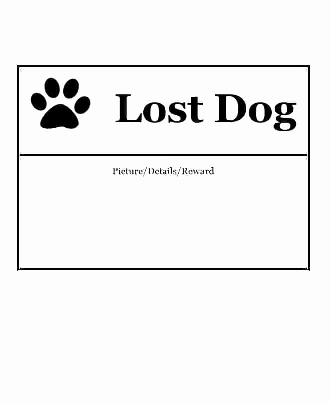 Missing Dog Flyer Template Luxury 40 Lost Pet Flyers [missing Cat Dog Poster] Template
