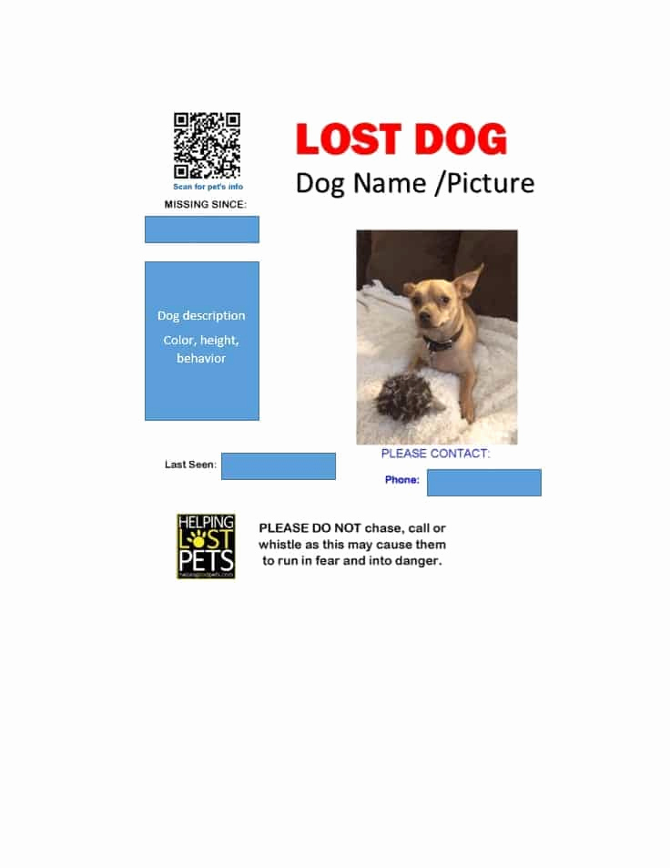 Missing Dog Flyer Template New 40 Lost Pet Flyers [missing Cat Dog Poster] Template