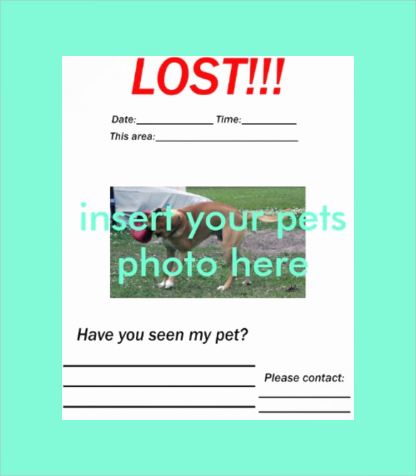 Missing Dog Flyer Template Unique 8 Lost Dog Flyer Templates