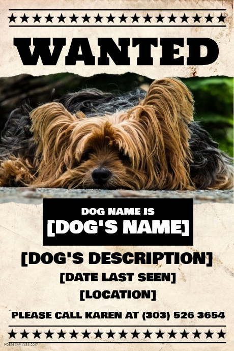 Missing Dog Flyer Template Unique Copy Of Lost Dog Flyer