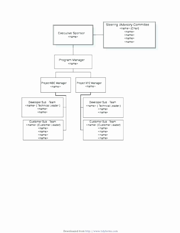 Ms Word org Chart Templates Awesome Microsoft Word org Chart Template – Jewishhistoryfo