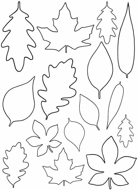 Paper Cut Outs Templates Unique Diy Paper Leaves Free Leaf Template