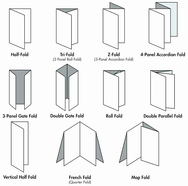 Tri Fold Table Tent Template Best Of How to Make A Table Tent In Publisher
